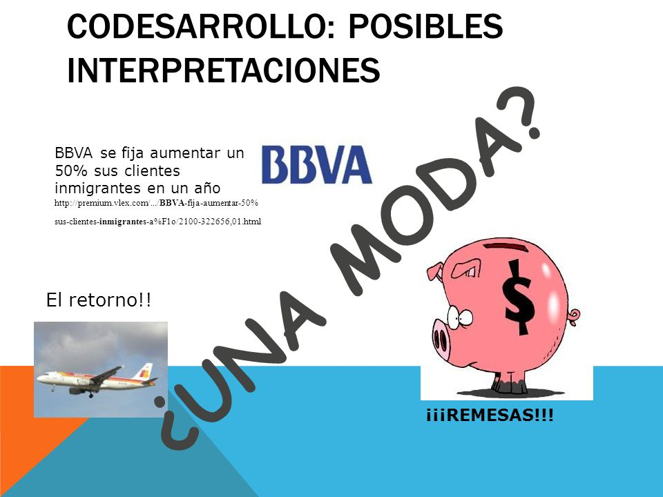Codesarrollo: Posibles interpretaciones