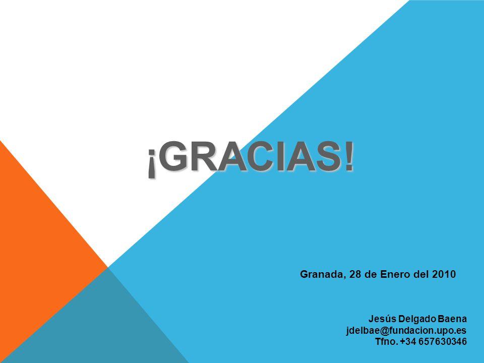 ¡GRACIAS! Granada, 28 de Enero del 2010 Jesús Delgado Baena