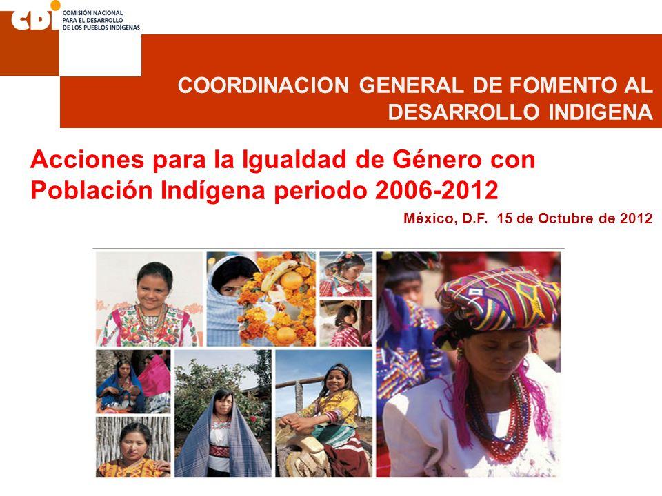 COORDINACION GENERAL DE FOMENTO AL DESARROLLO INDIGENA