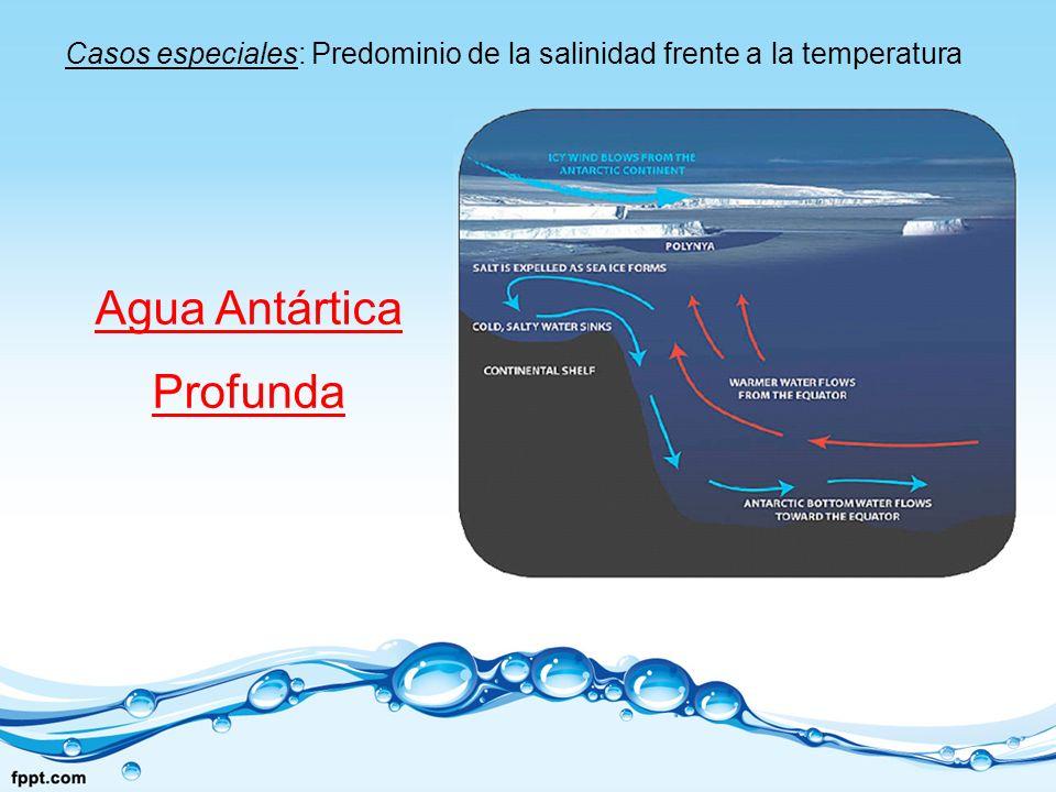 Agua Antártica Profunda