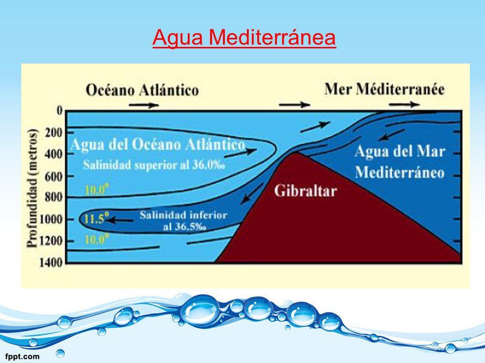 Agua Mediterránea