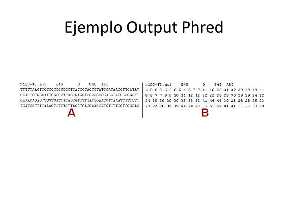 Ejemplo Output Phred