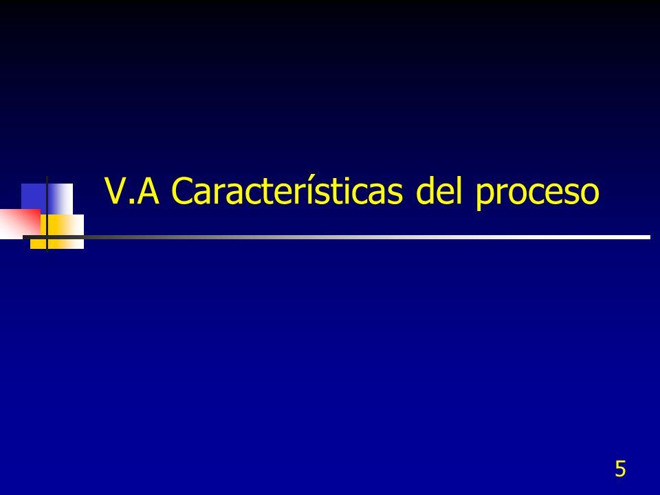 V.A Características del proceso