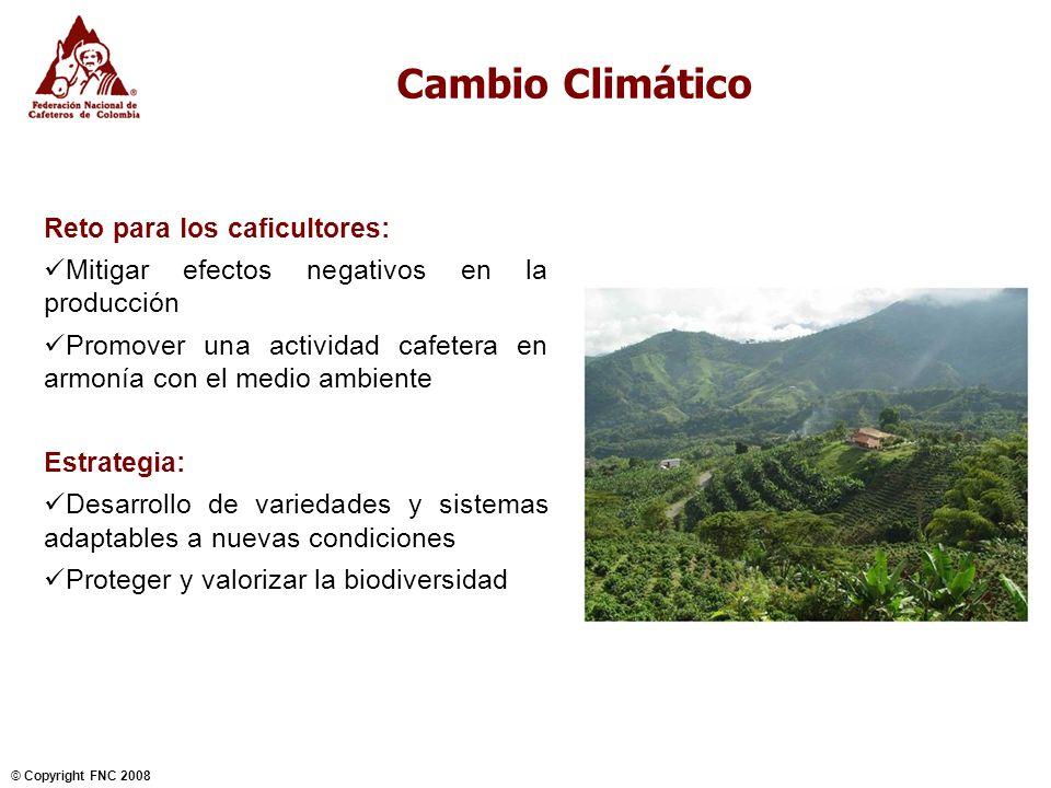 Cambio Climático Reto para los caficultores:
