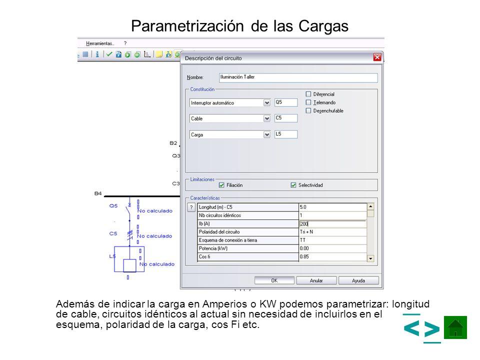 Parametrización de las Cargas