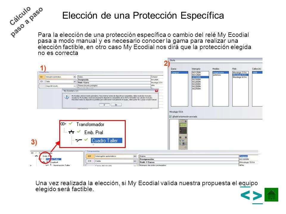 Elección de una Protección Específica