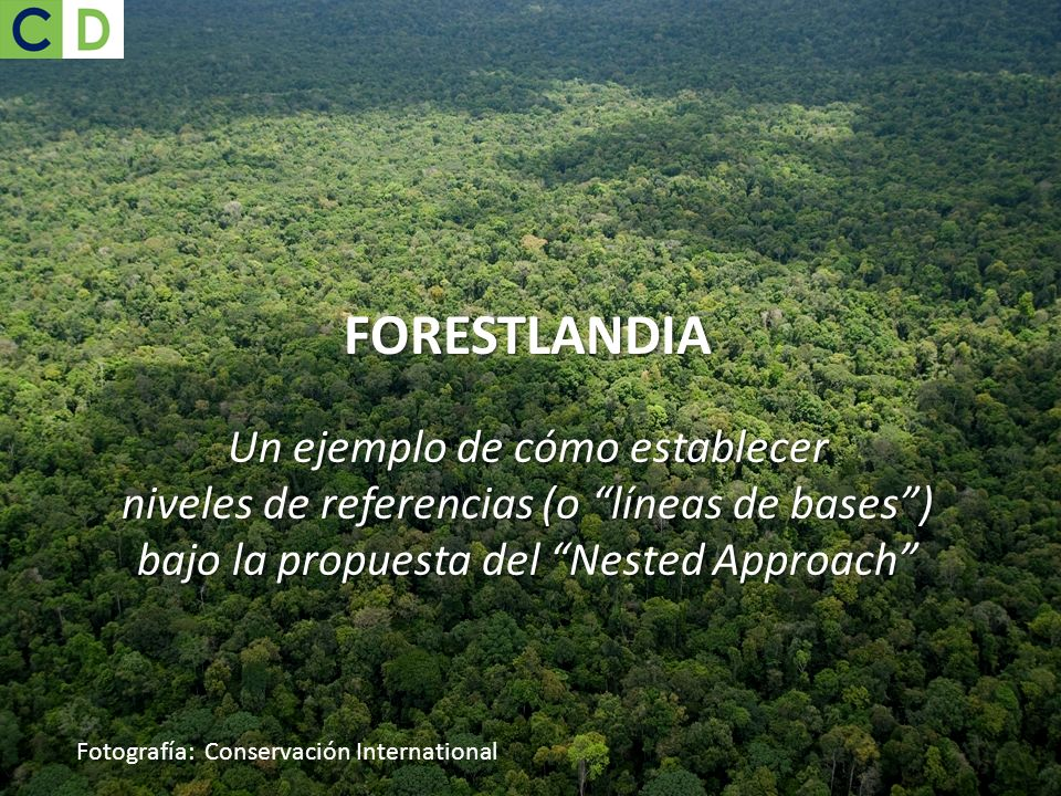 Fotografía: Conservación International