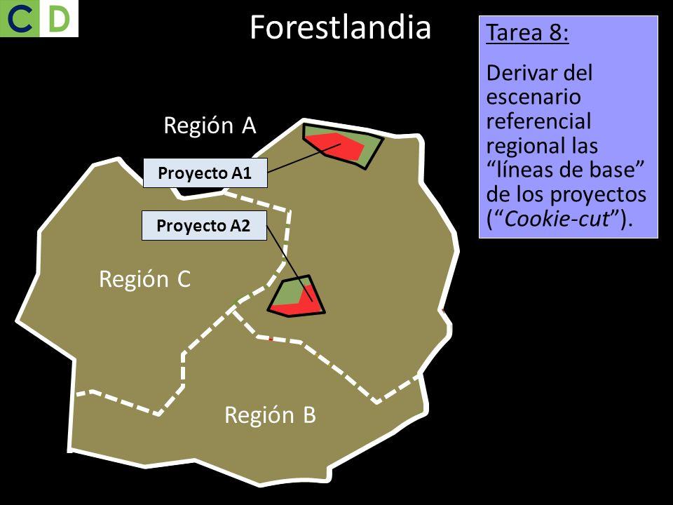 Forestlandia Tarea 8: Región A Región C Región C Región C Región B