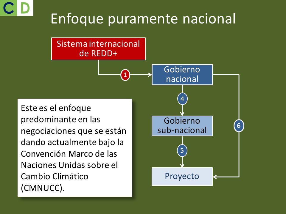 Enfoque puramente nacional