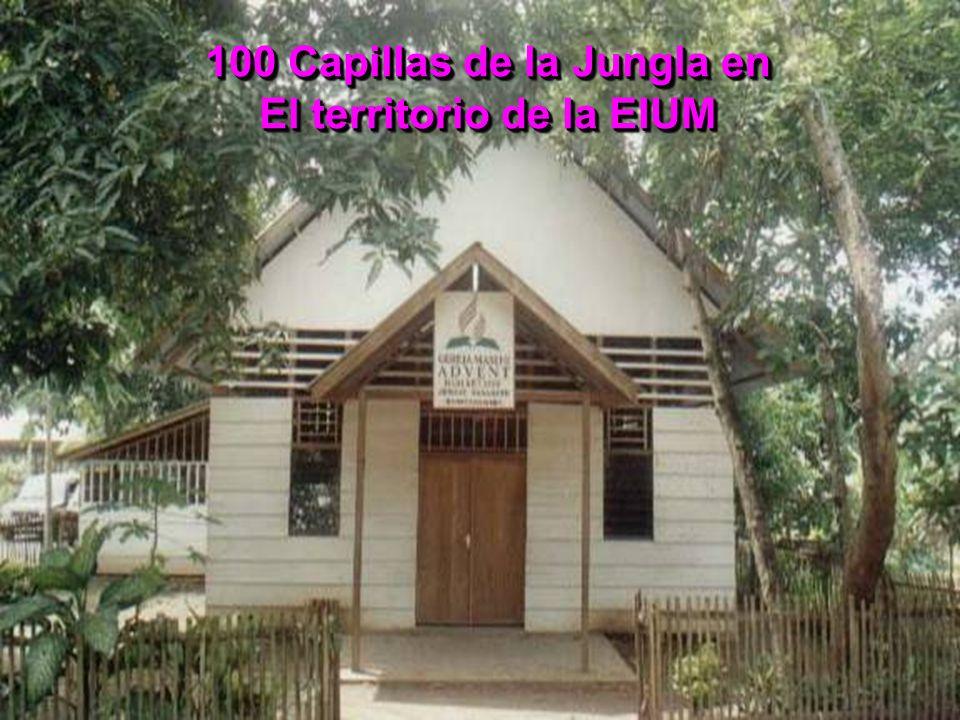 100 Capillas de la Jungla en El territorio de la EIUM