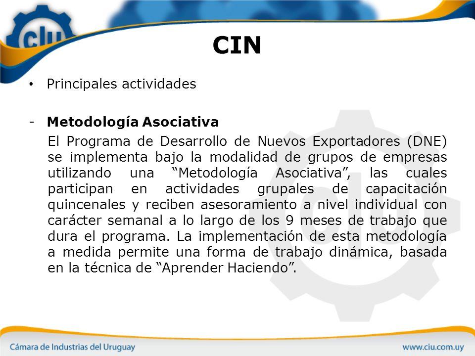 CIN Principales actividades Metodología Asociativa