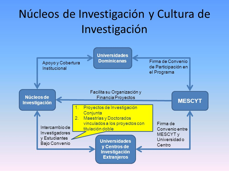 Núcleos de Investigación y Cultura de Investigación
