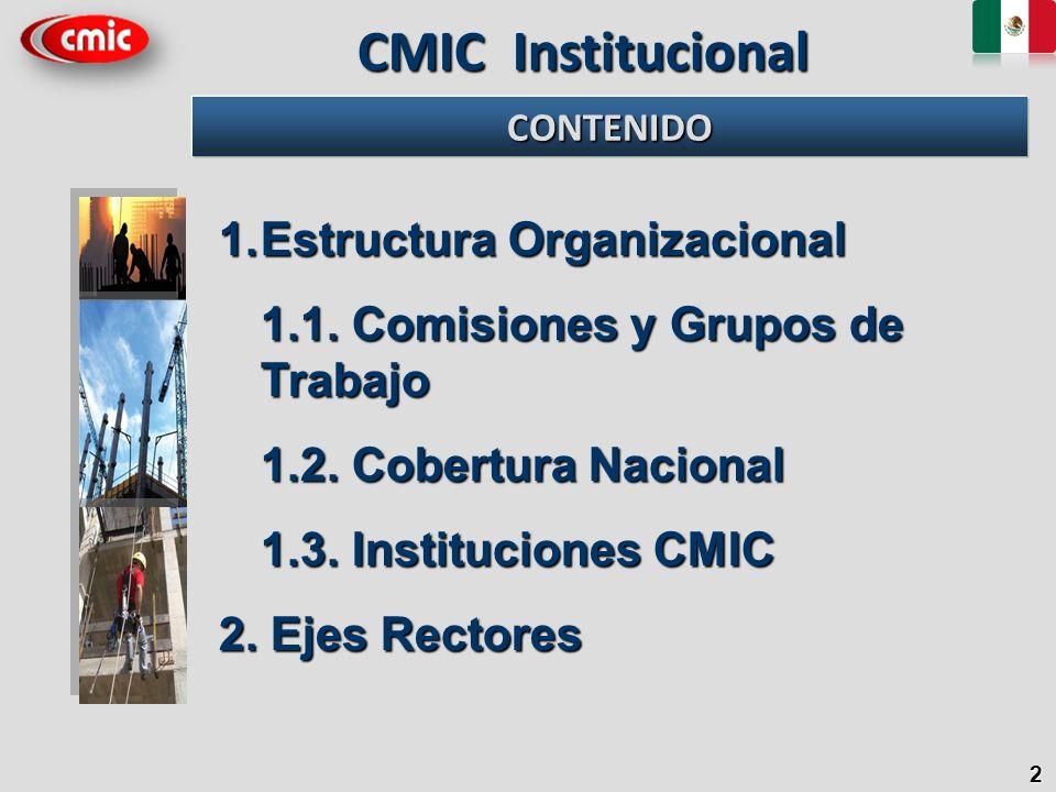 CMIC Institucional Estructura Organizacional