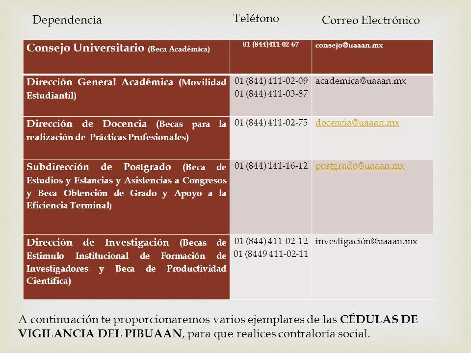 Consejo Universitario (Beca Académica)