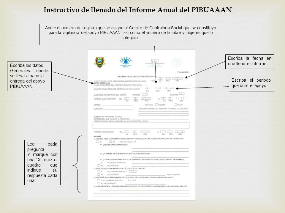 Instructivo de llenado del Informe Anual del PIBUAAAN