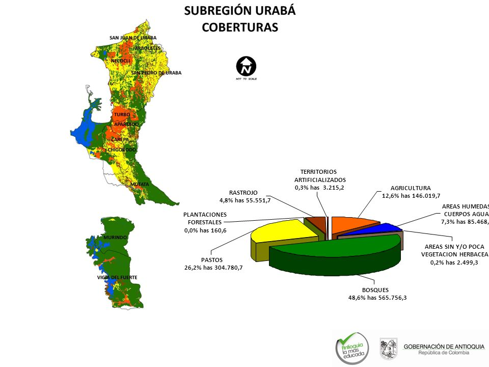 PASTOS 26,2% has 304.780,7. BOSQUES. 48,6% has 565.756,3. PLANTACIONES. FORESTALES. 0,0% has 160,6.