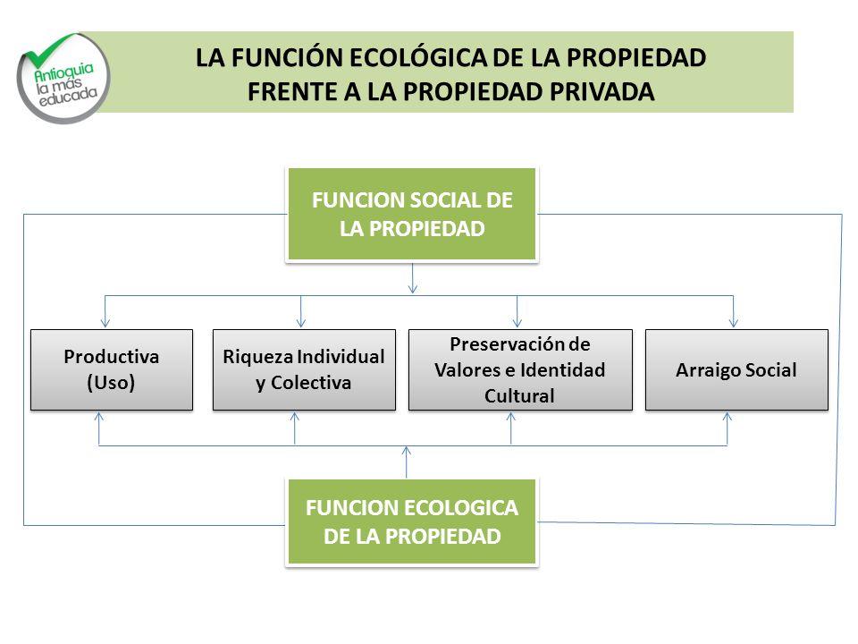 LA FUNCIÓN ECOLÓGICA DE LA PROPIEDAD FRENTE A LA PROPIEDAD PRIVADA
