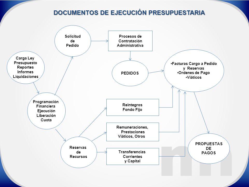 DOCUMENTOS DE EJECUCIÓN PRESUPUESTARIA