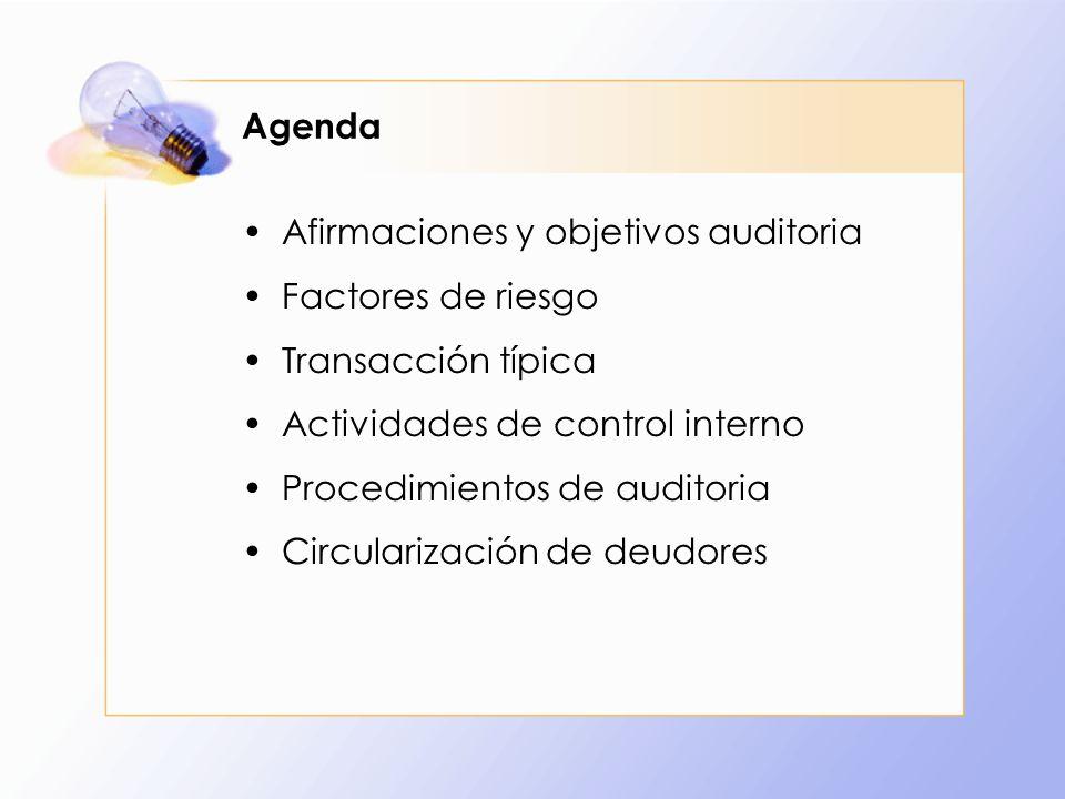 Agenda Afirmaciones y objetivos auditoria. Factores de riesgo. Transacción típica. Actividades de control interno.