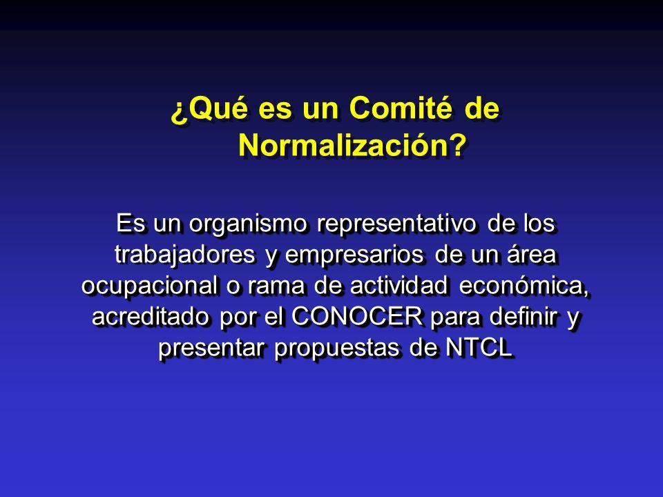 ¿Qué es un Comité de Normalización