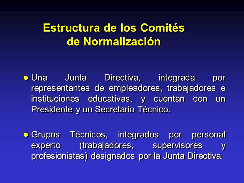 Estructura de los Comités de Normalización
