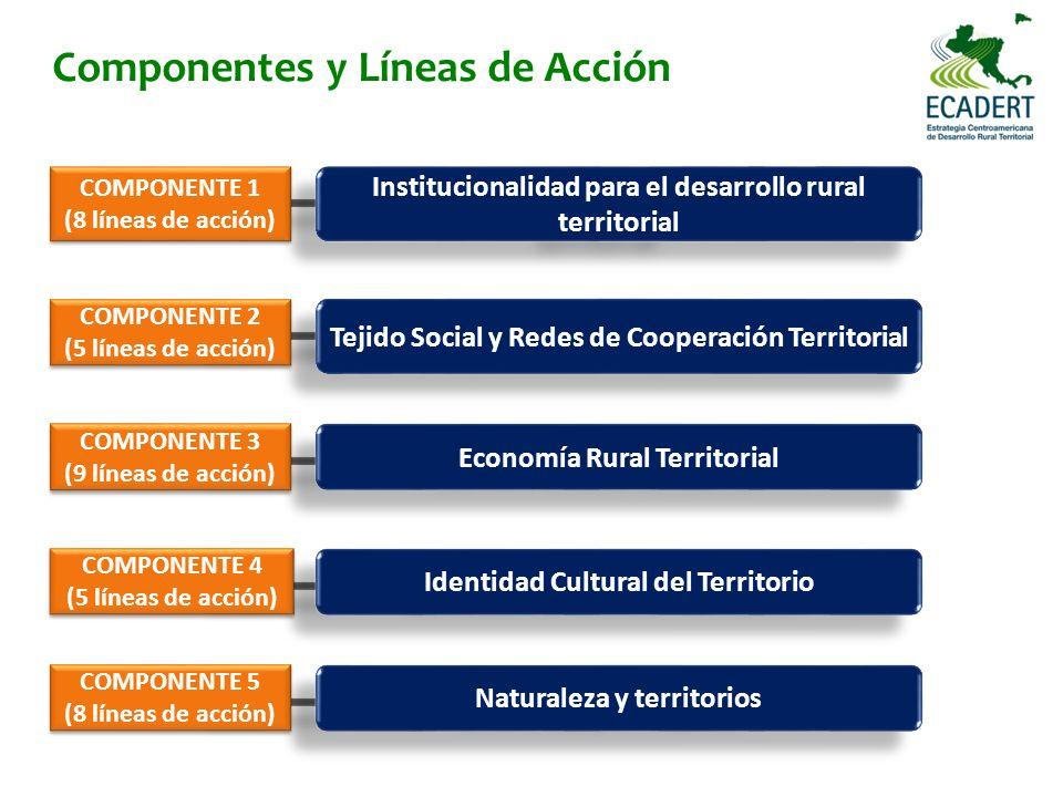 Componentes y Líneas de Acción