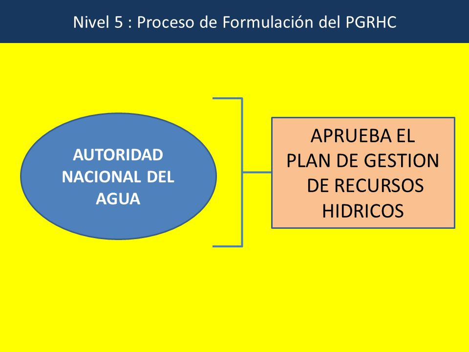 Nivel 5 : Proceso de Formulación del PGRHC