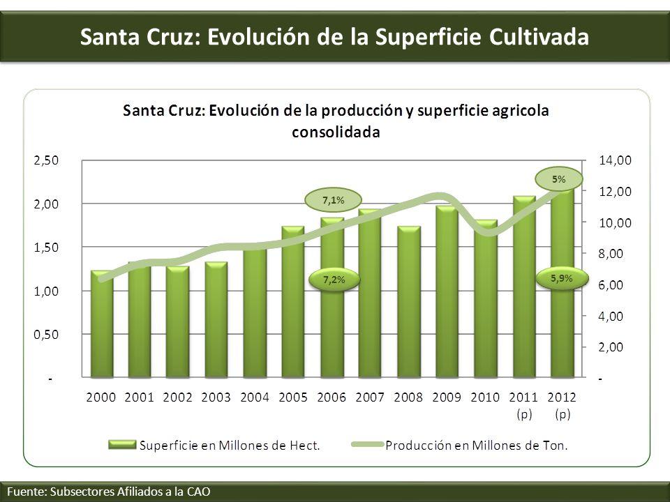Santa Cruz: Evolución de la Superficie Cultivada