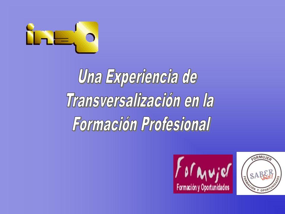 Transversalización en la Formación Profesional