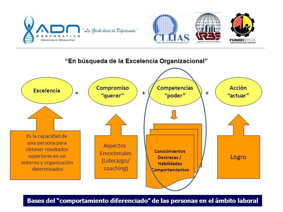 entorno y organización