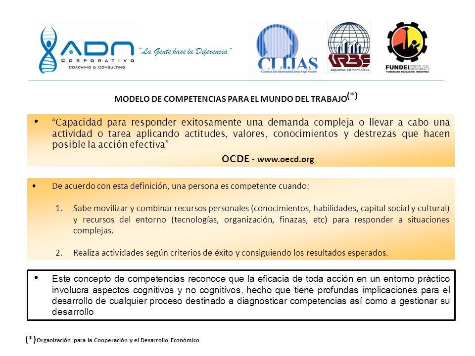 MODELO DE COMPETENCIAS PARA EL MUNDO DEL TRABAJO