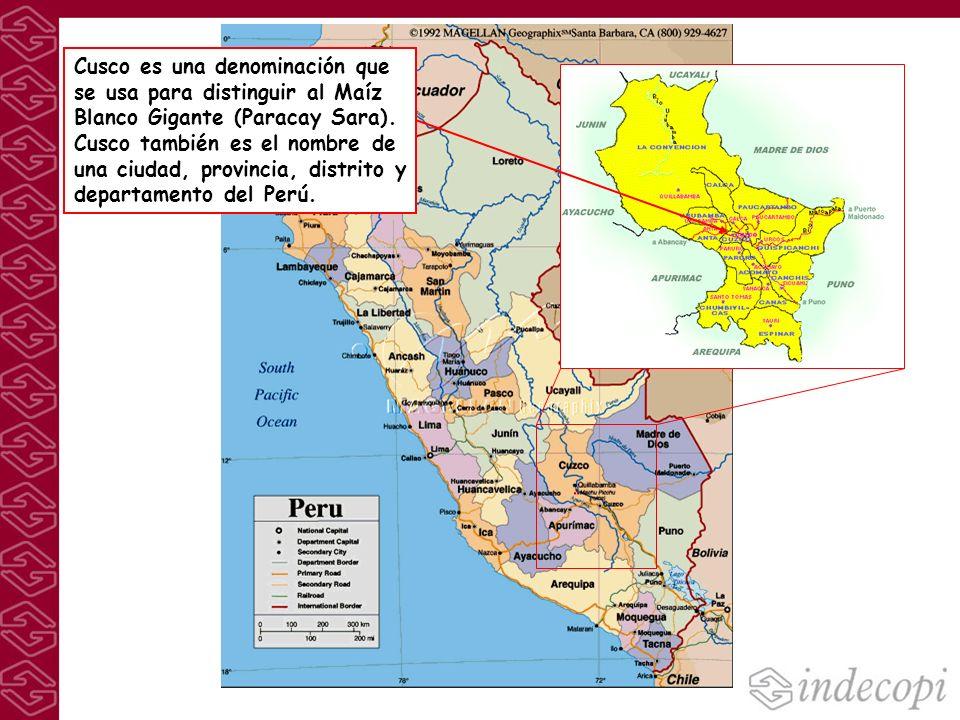 Cusco es una denominación que se usa para distinguir al Maíz Blanco Gigante (Paracay Sara).