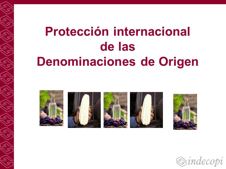 Protección internacional de las Denominaciones de Origen