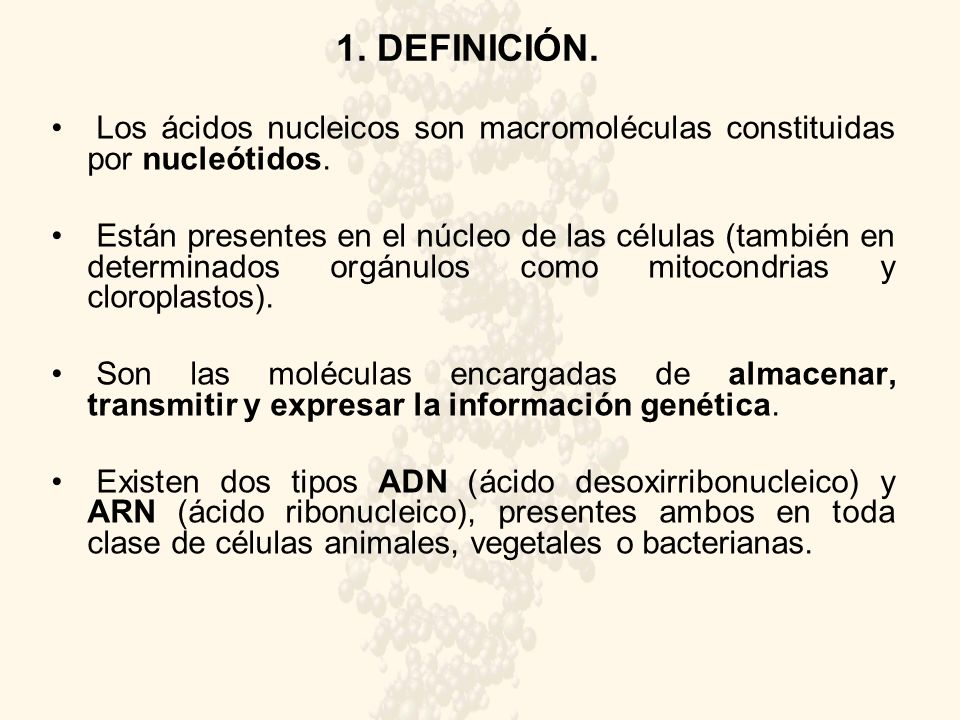 Cidos Nucleicos Ies Ba Aderos Ppt Descargar