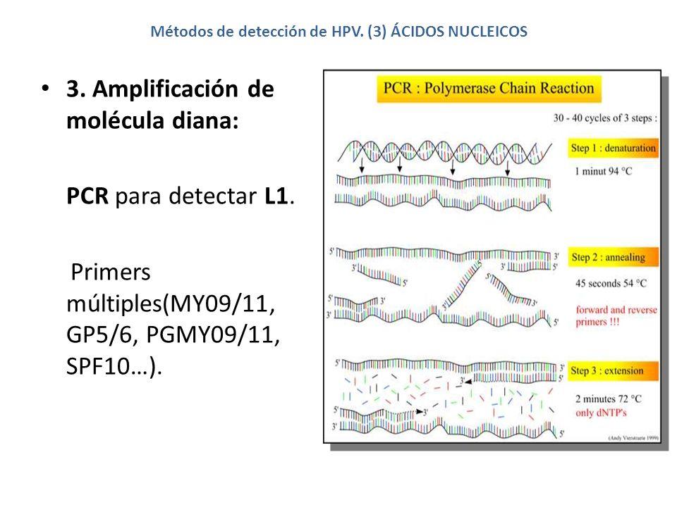 Métodos de detección de HPV. (3) ÁCIDOS NUCLEICOS