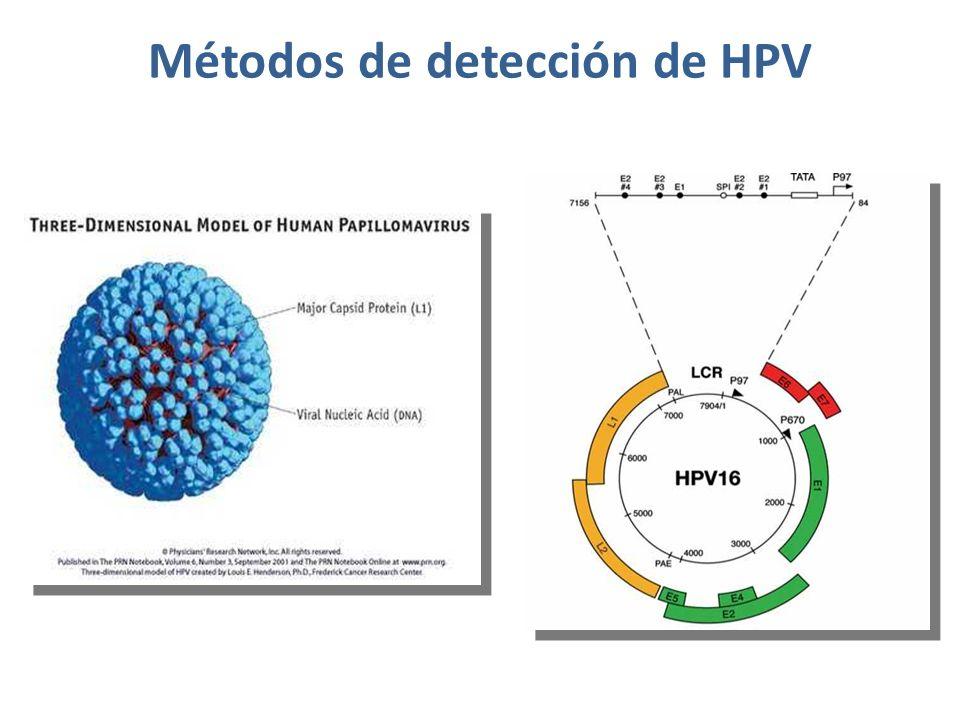 Métodos de detección de HPV