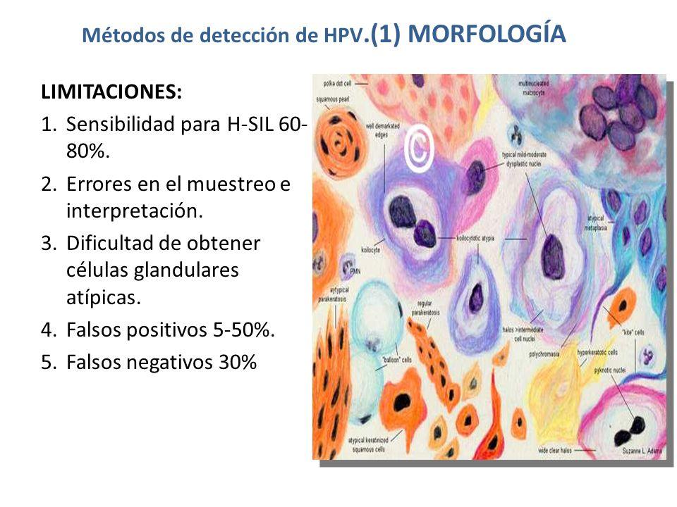 Métodos de detección de HPV.(1) MORFOLOGÍA