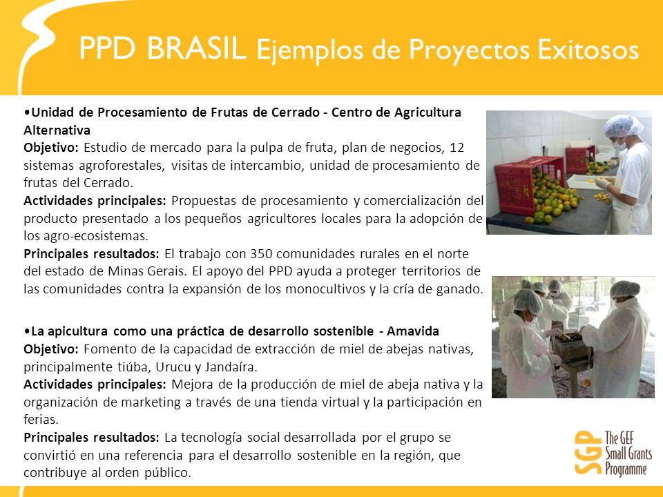PPD BRASIL Ejemplos de Proyectos Exitosos