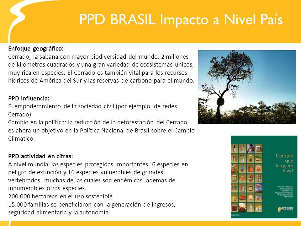 PPD BRASIL Impacto a Nivel País