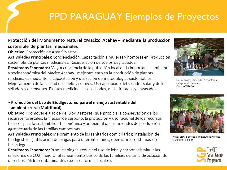 PPD PARAGUAY Ejemplos de Proyectos