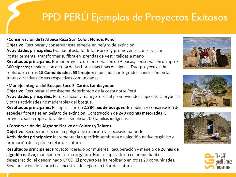 PPD PERÚ Ejemplos de Proyectos Exitosos