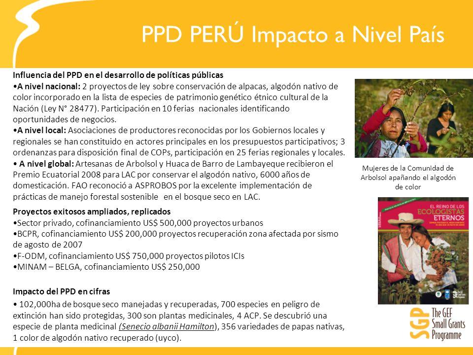 PPD PERÚ Impacto a Nivel País
