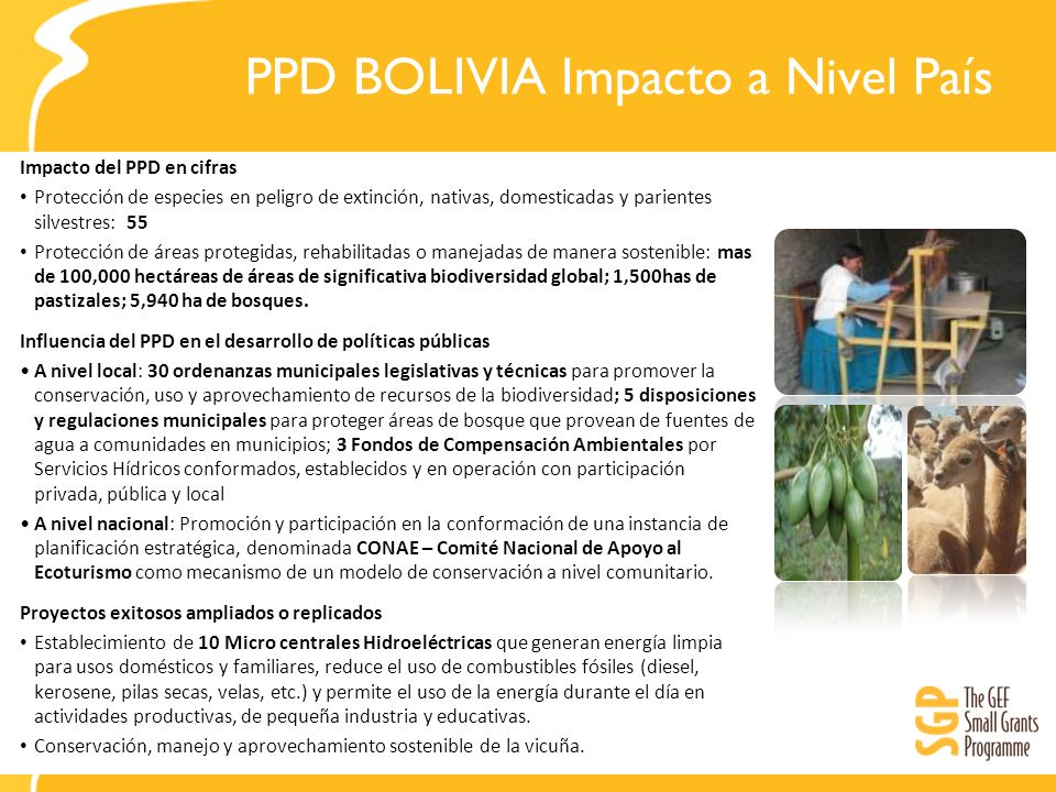 PPD BOLIVIA Impacto a Nivel País
