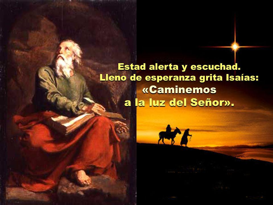«Caminemos a la luz del Señor». Estad alerta y escuchad.