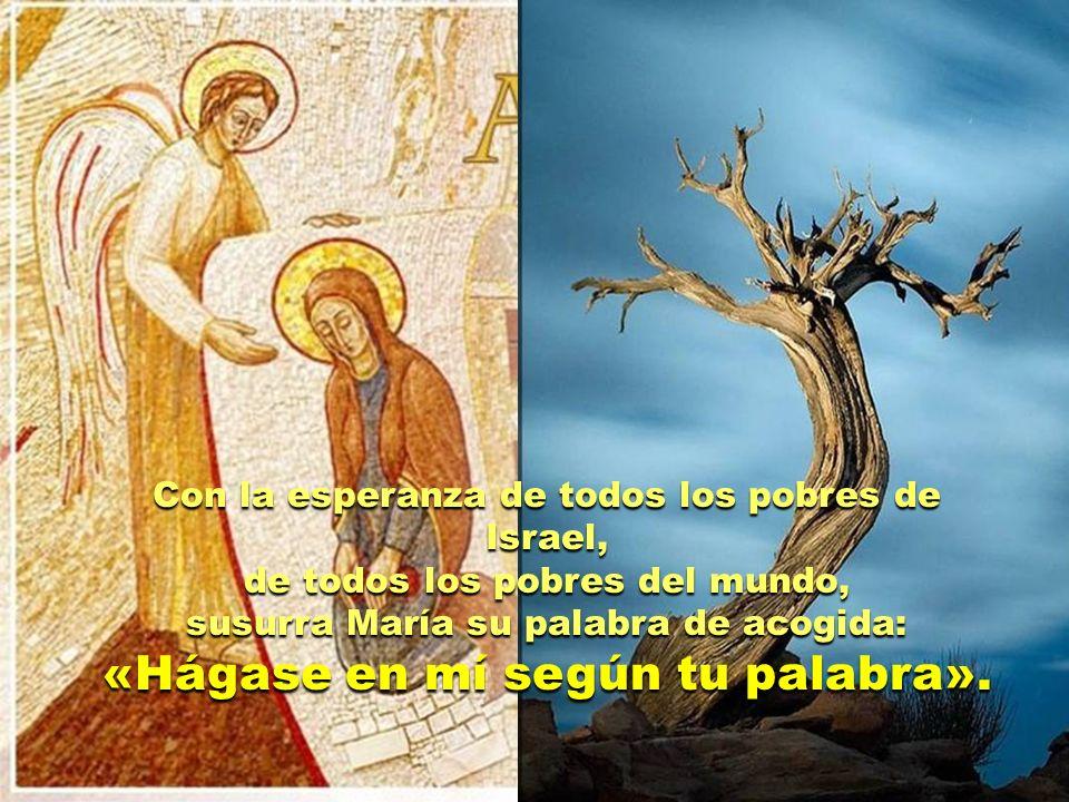 «Hágase en mí según tu palabra».