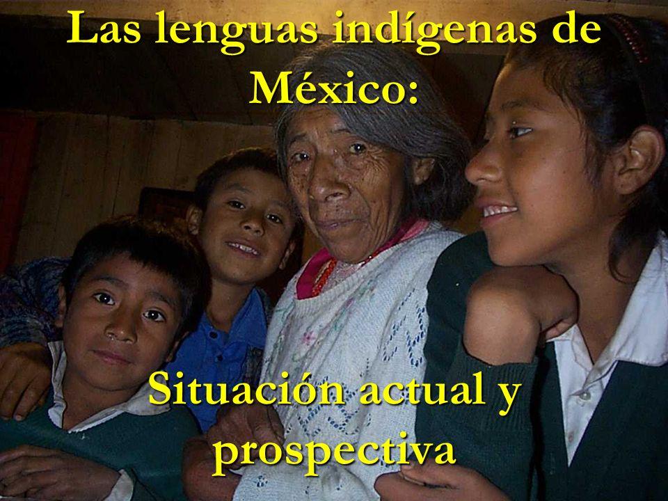 Las lenguas indígenas de México: Situación actual y prospectiva