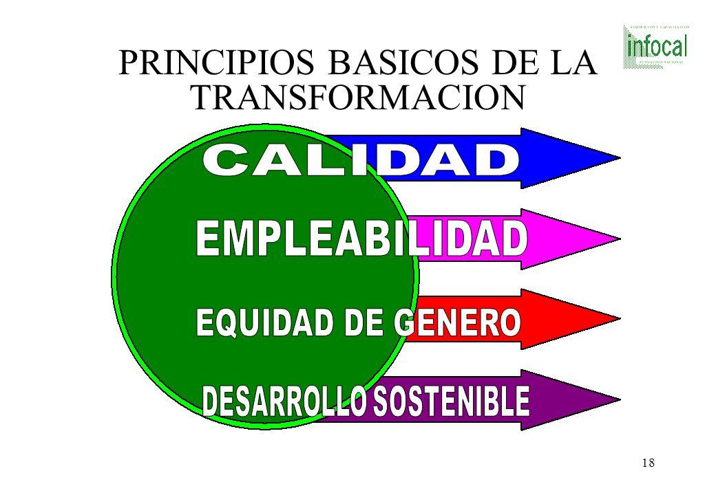 PRINCIPIOS BASICOS DE LA TRANSFORMACION