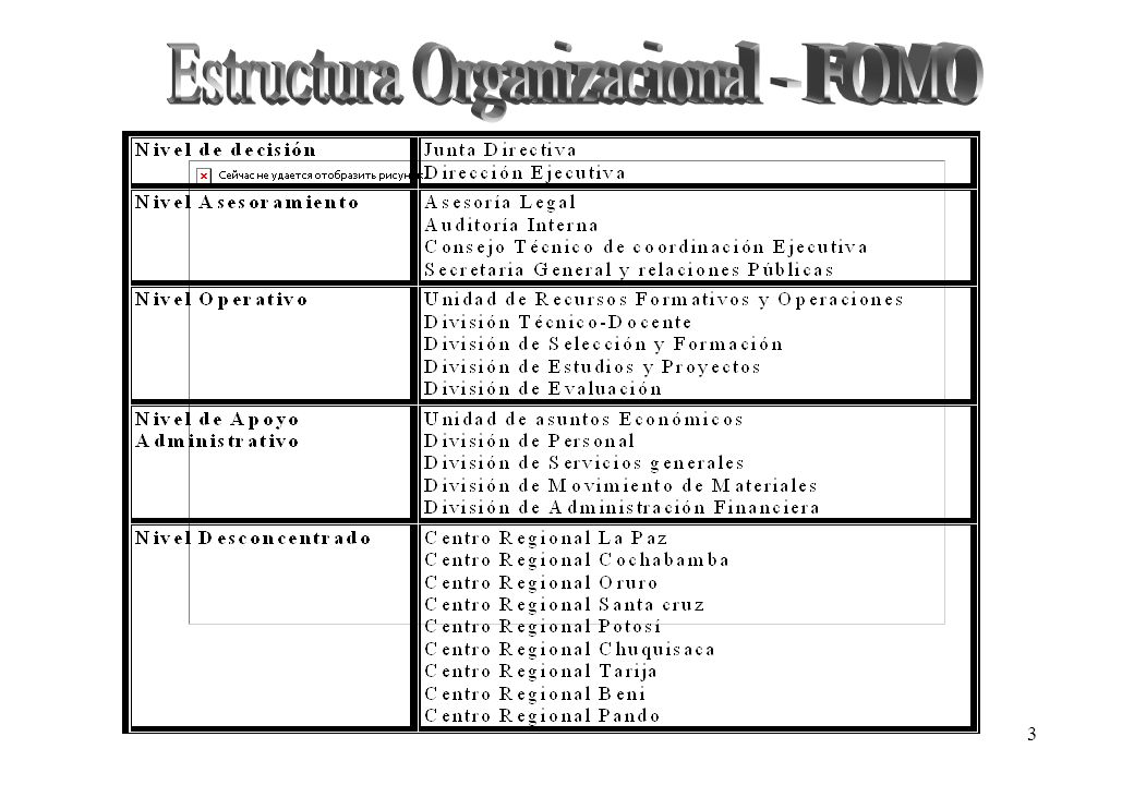 Estructura Organizacional - FOMO