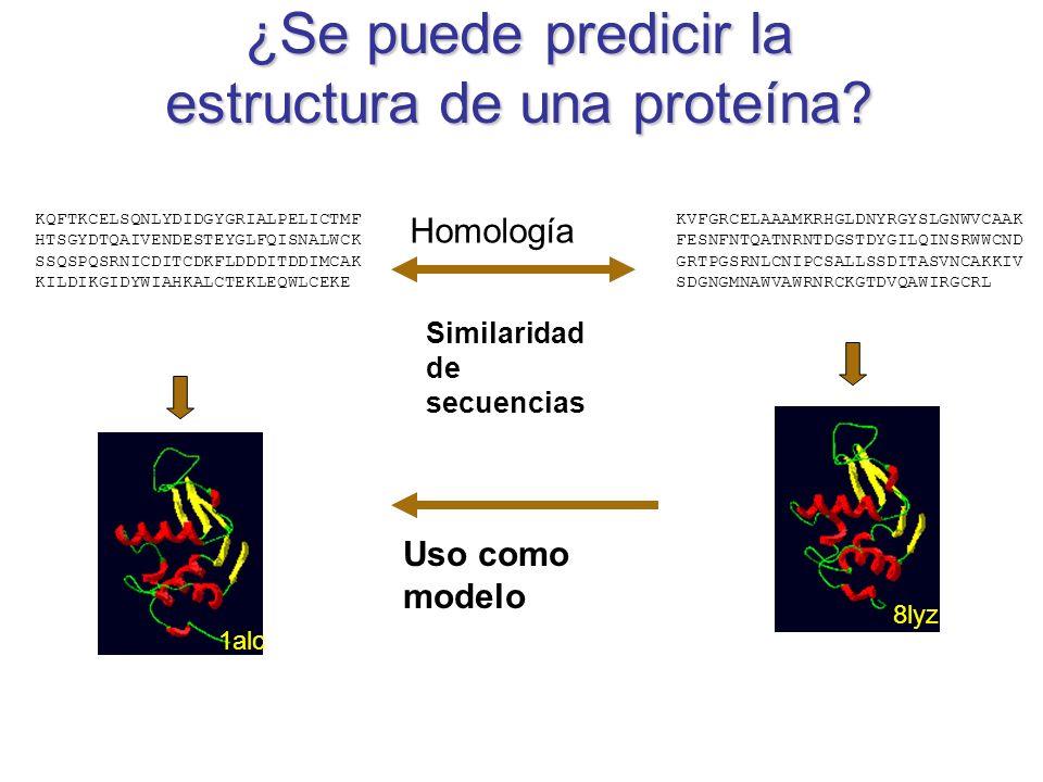 Proteínas Estructura y función Estructura tridimencional