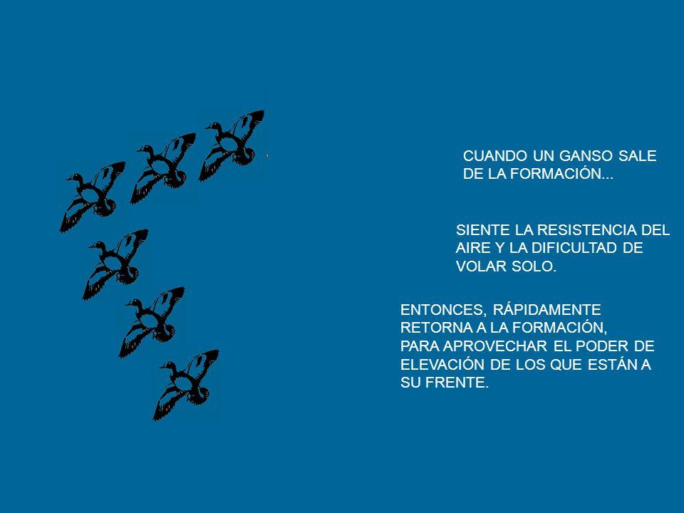 CUANDO UN GANSO SALE DE LA FORMACIÓN... SIENTE LA RESISTENCIA DEL. AIRE Y LA DIFICULTAD DE. VOLAR SOLO.
